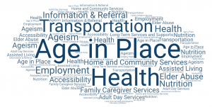 Top keywords from stakeholder feedback include age in place, transportation and health
