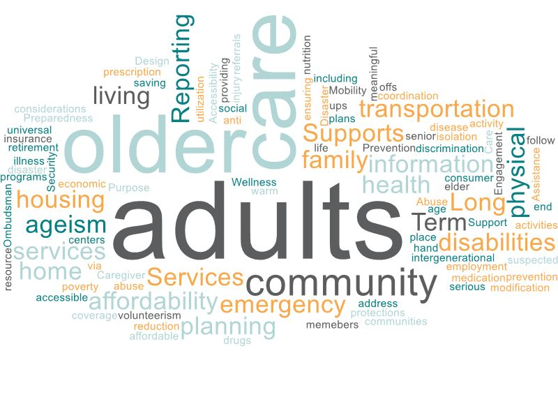 Graphic including words like older, care, adults, community, supports, services, and transportation.